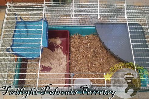 cage maternité2.jpg
