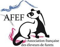 Logo-AFEF