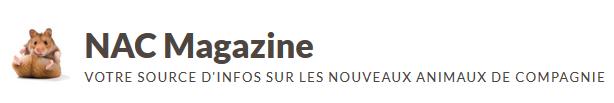 banniere magazine